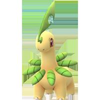 bayleef Pokemon Go