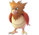 spearow Pokemon Go