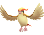 pidgeot-pokemon-go