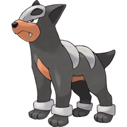 houndour-pokemon-go