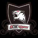 ROX_Tigers LCK Team