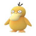 Pokemon Go Psyduck