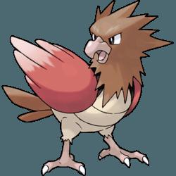Pokemon Duel Quest Drop List